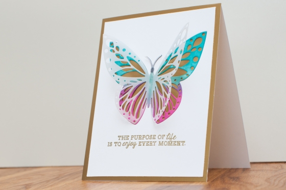 Hero arts fancy dies butterfly_ Serine Designs blog
